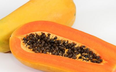Papaya getrocknet