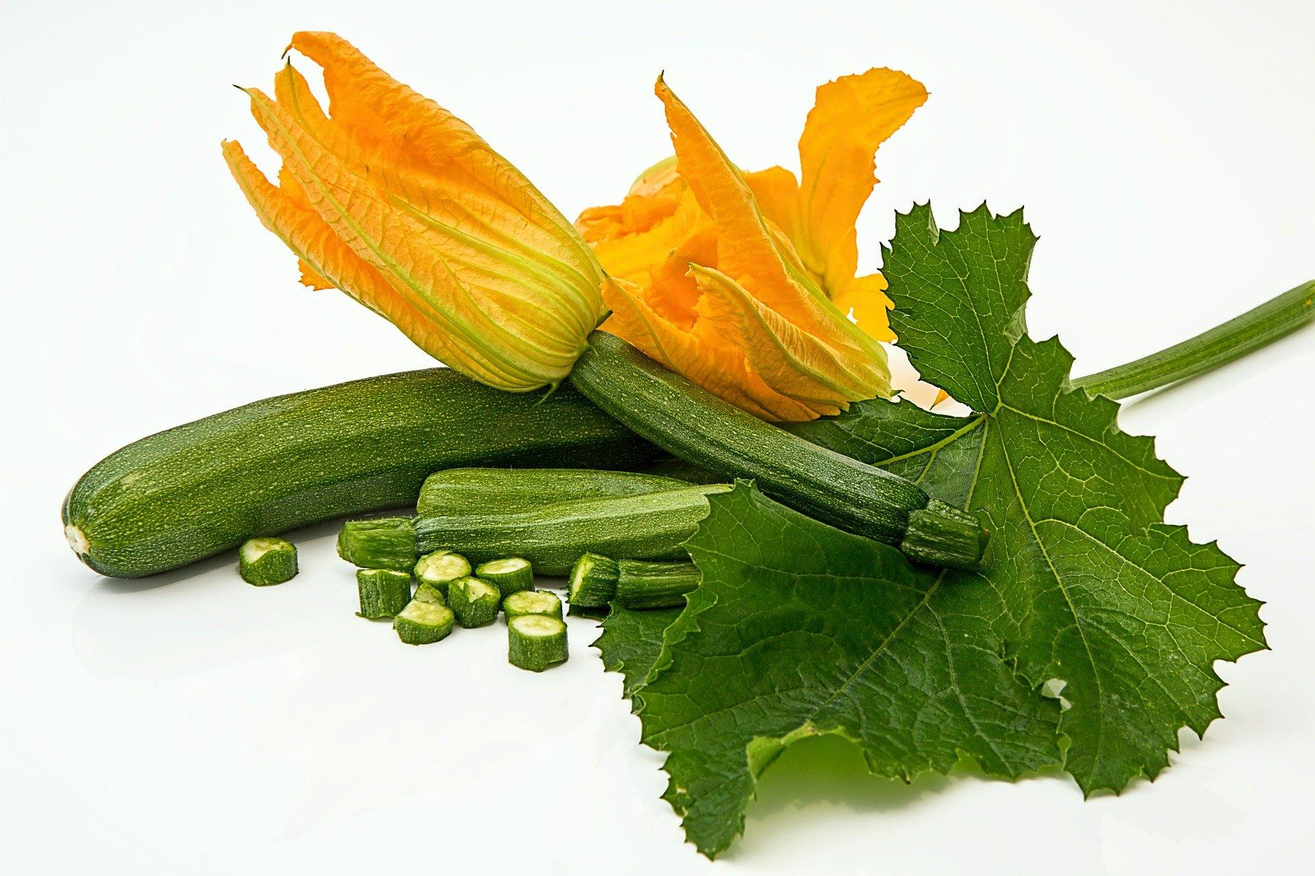 Zucchini mit Blüte