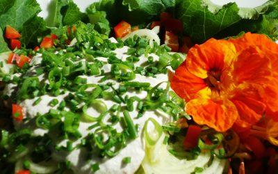 24. März bis 16. Juni: Gesunde Ernährung